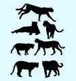 cheetahs and panthers silhouettes vector image vector image