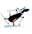 Dog a skier vector image