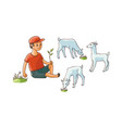 flat boy sitting at pasture grazing goats vector image