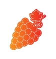 Grapes sign Orange applique isolated vector image vector image