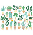 home plants in pots nature houseplants vector image vector image