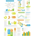 INFOGRAPHIC DEMOGRAPHICS NEW STYLE TOY vector image vector image