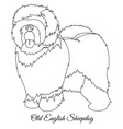 old english sheepdog outline vector image vector image
