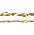 realistic fiber ropes vector image vector image