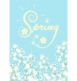 blooming tree branches vector image