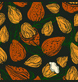 almond nut seamless pattern background vector image vector image