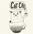 cat in coffee cup vector image