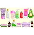 Collection of bath cosmetics vector image vector image