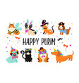 funny animals pets cute dogs and cats with a vector image