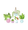 home decorative plants collection green trendy vector image