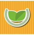 Organic food design healthy food menu concept vector image