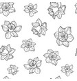 seamless pattern of hand drawn sketch narcissus vector image vector image