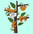 set cute funny sloth hanging on the tree sleepy vector image vector image