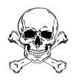 jolly roger engraving style vector image