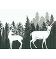 deer in the woods vector image