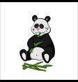 animals of zoo panda eating bamboo vector image