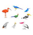 cartoon color exotic bird icon set vector image vector image