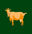 in flat style goat vector image vector image
