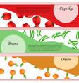 pepper or paprika label or banner vector image