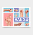 realistic female hands collection vector image