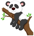 Sleeping panda cartoon vector image vector image