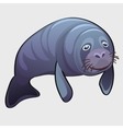 Grey thick marine seal cute animal vector image vector image