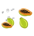 Healthful tropical cartoon papaya fruit vector image vector image
