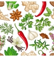 hot pattern with herbs on white vector image vector image