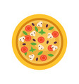 italian pizza with different ingredients mushrooms vector image
