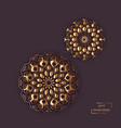 two flower oriental mandalas vector image