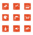 untamed icons set grunge style vector image vector image