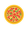 delicious pizza with tomatoes fresh basil leaves vector image