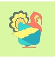 Hand drawn flat square icon Turkey isolated on vector image vector image