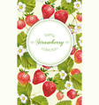 Strawberry vertical banner vector image vector image