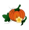 Autumn Pumpkin and leaves cartoon vector image