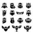 bird logo wild owl knowledge symbols vector image