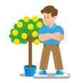coin tree vector image vector image