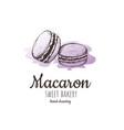 macaron macaroon almond cakes macaron sketch vector image vector image