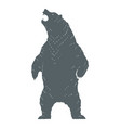 roaring bear silhouette vector image
