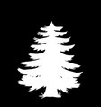 white silhouette of coniferous tree icon isolated vector image vector image