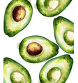 avocado pattern watercolor green juicy vector image vector image