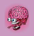 brain jaw and eyes neurology science biology vector image vector image