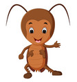 funny cockroach good posing vector image
