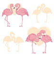 pink flamingo cartoon flat set exotic tropical vector image vector image