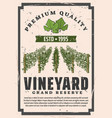 premium quality vineyard winemaking factory vector image vector image