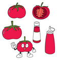 set of tomato and tomato ketchup vector image vector image