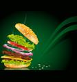 steaming hamburger vector image vector image