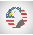 usa flag freedom symbol eagle vector image vector image
