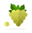 a bunch green grapes with leaves and one grape vector image