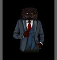 anthropomorphic cat dressed in elegant grey suite vector image